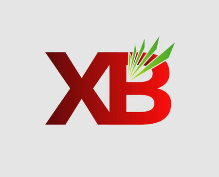 initial: XB initial group company