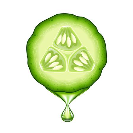 Verse komkommer slice geïsoleerd op witte achtergrond