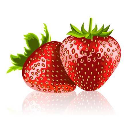 Two ripe strawberries 矢量图像