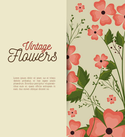 vintage flowers frame decoration vector illustration design