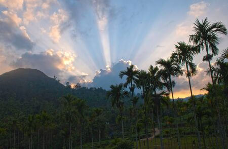 Sun setting amongst hills and coconut trees photo