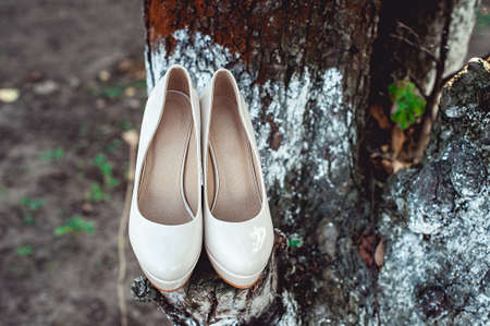 brides biege shoes on heel on a tree Stock Photo