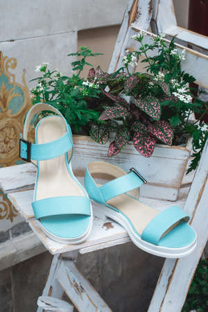Pair of female summer blue sandals. Concept art womens shoes. style footwear.