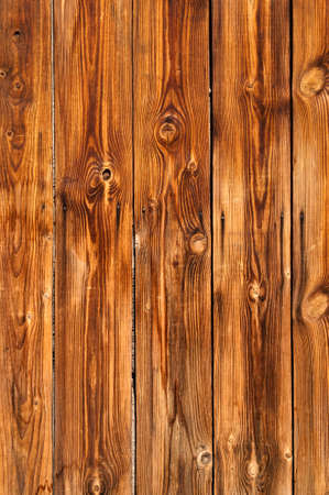 natural knotted wood texture photo