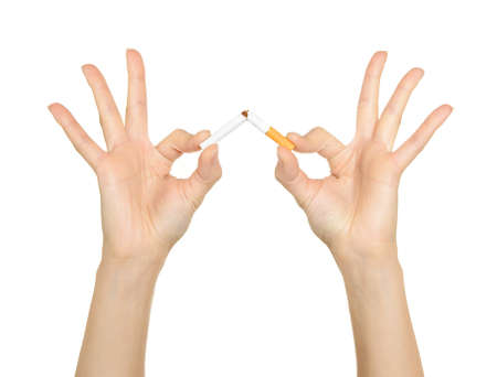 bad habit: Female hands crushing cigarettes isolated on white background Stock Photo