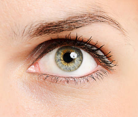 light brown eyes: Close-up of a beautiful young womans eye Stock Photo
