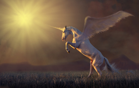Pink unicorn with the wings reared in the grass on mountains background Imagens