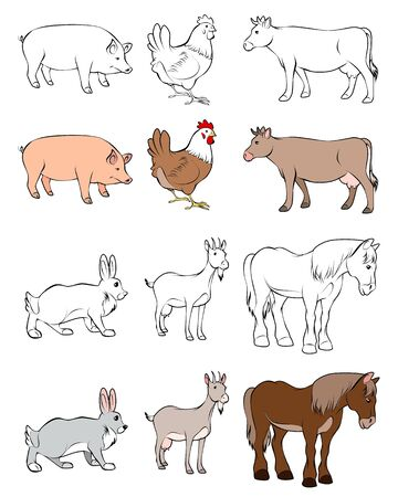 chiken: illustration of  animals Illustration