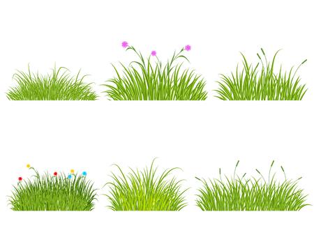 6 緑の草セットのベクトル イラスト