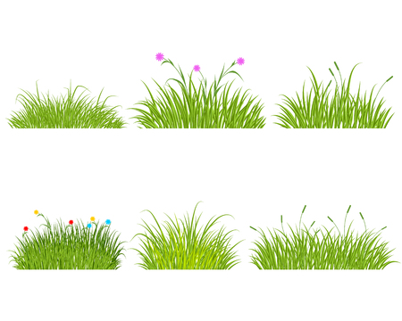 Vector illustration of a six green grass set Stock Illustratie