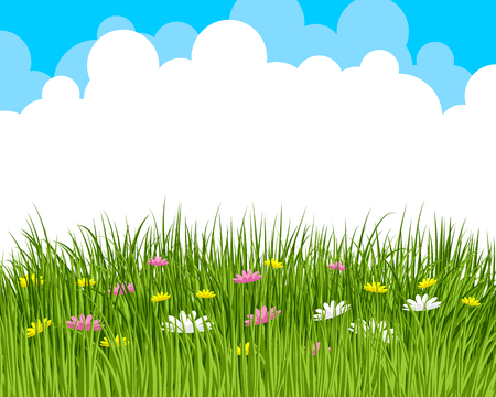 beauty of nature: Vector illustration of a clouds and meadow Illustration