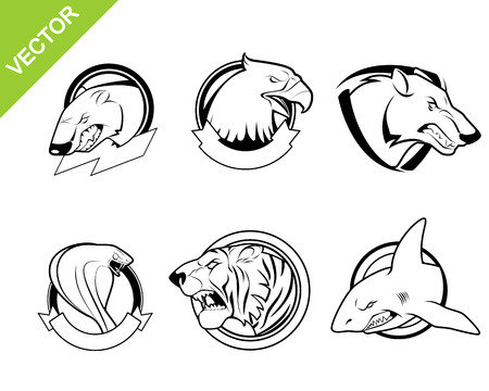 white tiger: Vector illustration of a six animals set