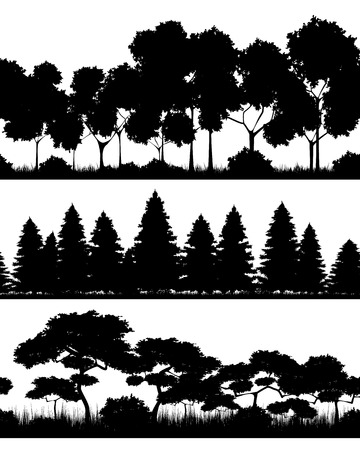 Vector illustration of a three forests silhouettes