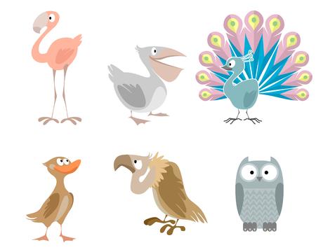 Vector illustration of a six funny birds Illustration