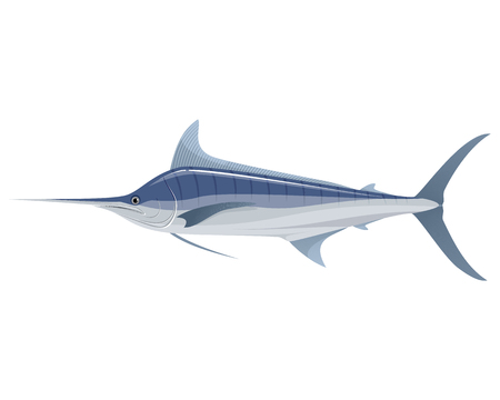 marline: Vector illustration of a big blue marlin Illustration