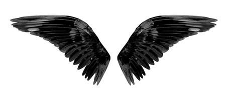 Angel wings isolated on white background with clipping part.
