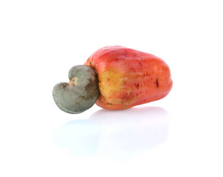 Cashew fruit (Anacardium occidentale) isolated on white background