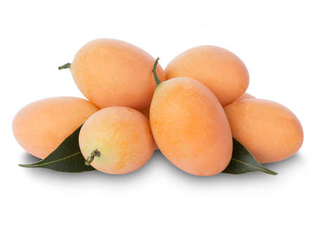 Marian Plum or Plum Mango is a bunch on a white background, sweet marian plum thai fruit isolated on white background