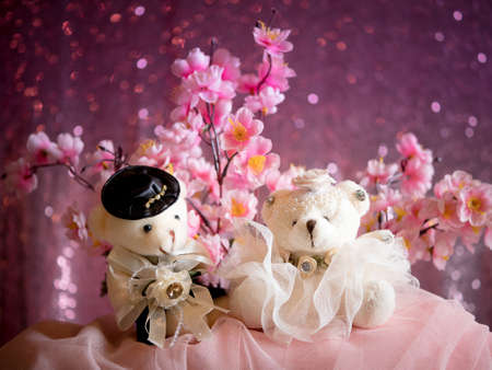 love concept : Couple Teddy Bears in wedding dress , valentine greeting card background