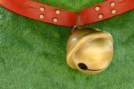 red dog collar made from leather decorate with pins hanging big golden bell on green grass background with copy space 免版税图像