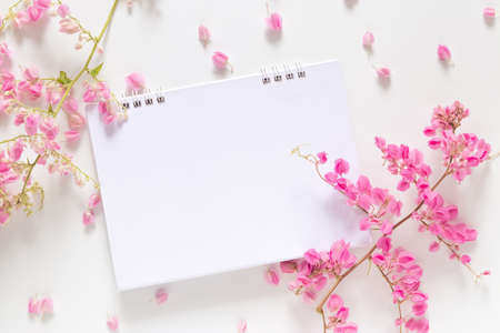 flat lay of white blank calendar with copy space decorate with pink flower isolated on white background