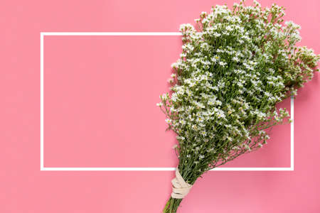 creative of minimal spring fresh white flower bouquet isolated on pink background with white border frame and copy space for text on greeting card or invitation card