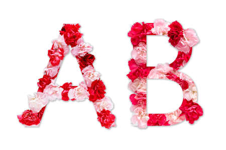 flower font alphabet A B set (collection A-Z), made from real Carnation flowers pink, red color with paper cut shape of capital letter. flora font for text, typography decoration isolated on white 写真素材