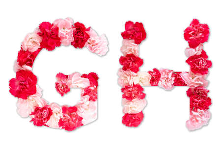 flower font alphabet G H set (collection A-Z), made from real Carnation flowers pink, red color with paper cut shape of capital letter. flora font for text, typography decoration isolated on white Stock Photo