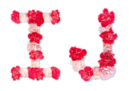 flower font alphabet I J set (collection A-Z), made from real Carnation flowers pink, red color with paper cut shape of capital letter. flora font for text, typography decoration isolated on white