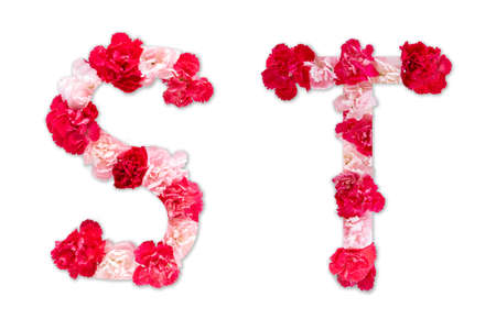 flower font alphabet S T set (collection A-Z), made from real Carnation flowers pink, red color with paper cut shape of capital letter. flora font for text, typography decoration isolated on white