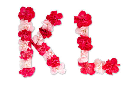 flower font alphabet K L set (collection A-Z), made from real Carnation flowers pink, red color with paper cut shape of capital letter. flora font for text, typography decoration isolated on white