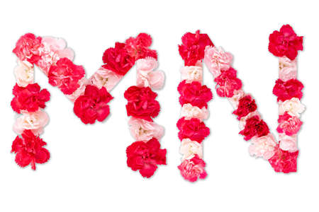 flower font alphabet M N set (collection A-Z), made from real Carnation flowers pink, red color with paper cut shape of capital letter. flora font for text, typography decoration isolated on white