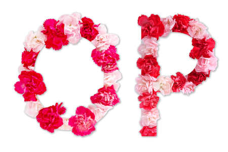 flower font alphabet O P set (collection A-Z), made from real Carnation flowers pink, red color with paper cut shape of capital letter. flora font for text, typography decoration isolated on white
