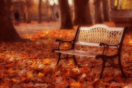 lonliness: Lonely Bench in a Hungarian Cemetery Stock Photo