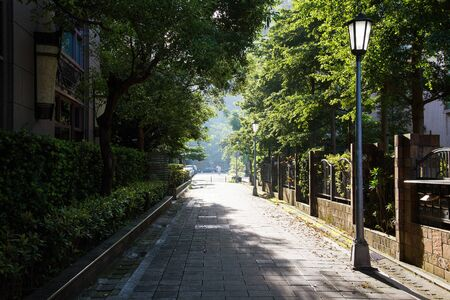 lamp post: lamp post in a side street on a sunny day with shadows and trees Stock Photo