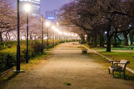 park path: Minami Temma walking park path at night Stock Photo