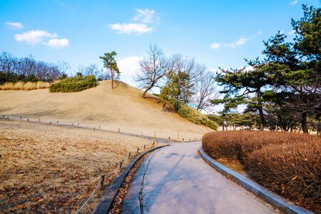 walking path: walking path on a Sunny day in Olympic Park Seoul South Korea Stock Photo