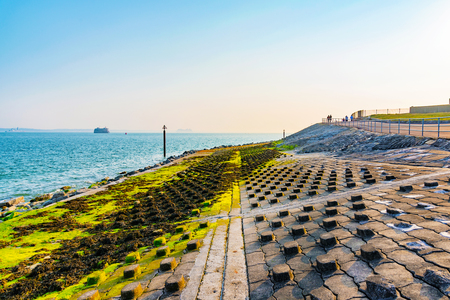 Moss and rocky seafront of Portsmouth Stock Photo