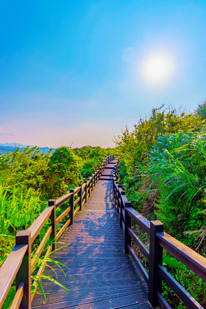 View of a mountain path with sunlight and nature in Taiwan