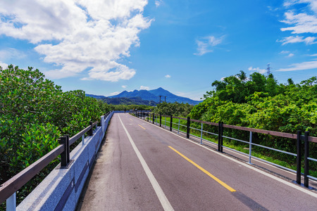 riverside trees: Cycling path on a sunny day in a rural area of Taipei Stock Photo