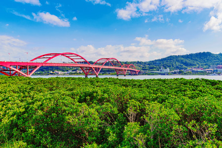riverside trees: Scenic view of Guandu bridge on a sunny day in taipei Stock Photo