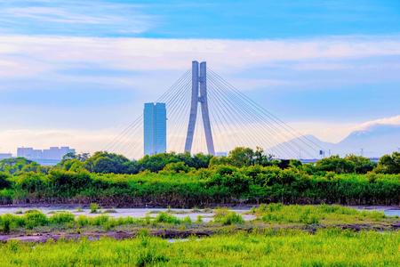 swampland: Bridge with river grassland area in Taipei