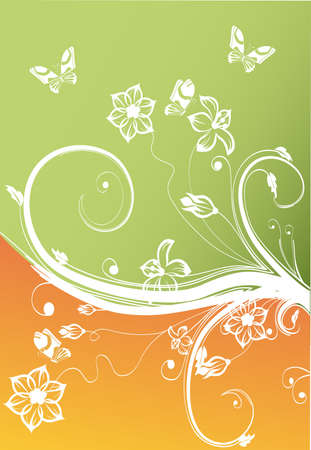Beautiful vector background with different elements. photo