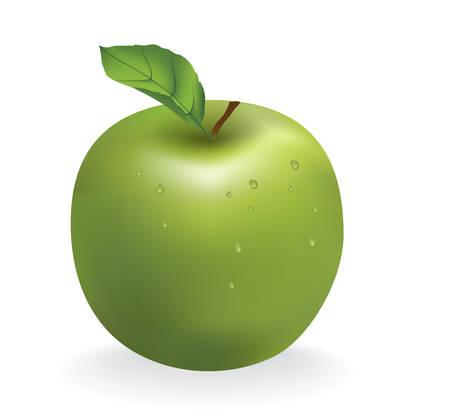wholesome: apple isolated on white background  Illustration