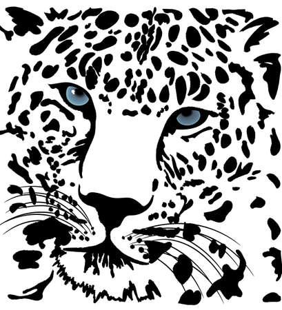 Vector beautiful tiger Vector