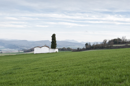 the basque country: Cemetery in a wheat field in the Basque Country Stock Photo