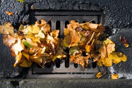 쇠 격자: 가 폭풍 후 낙엽로 막혀 하수 화격자