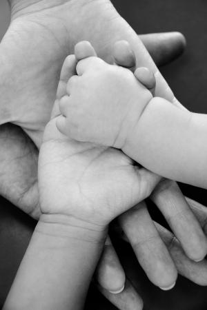 solidaridad: Cuatro manos de la familia, un hijo, una hija, una madre y un padre. Concepto de unidad, apoyo, protección y felicidad. Foto de archivo