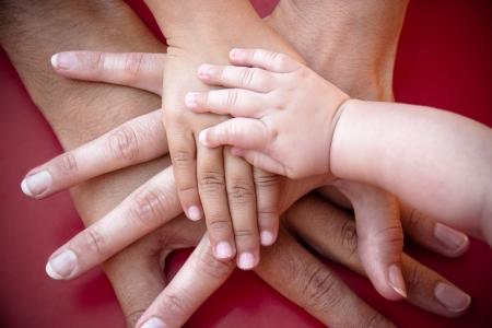 familias unidas: Cuatro manos de la familia, un hijo, una hija, una madre y un padre. Concepto de unidad, apoyo, protección y felicidad. Foto de archivo
