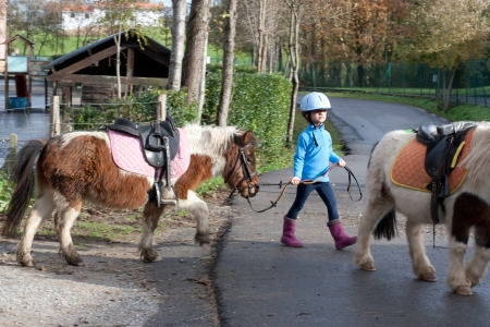4 years old girl leading a pony shetland in her first horse riding lesson  Some blur for the movement